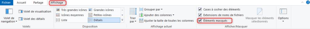 Affichage des éléments masques dans l'explorateur Windows.